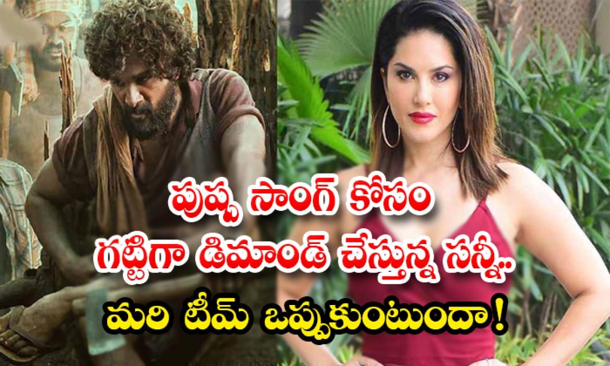 Sunny Leone Remuneration For Allu Arjun Pushpa Movie Special Song-పుష్ప సాంగ్ కోసం గట్టిగా డిమాండ్ చేస్తున్న సన్నీ..మరి టీమ్ ఒప్పుకుంటుందా -Latest News - Telugu-Telugu Tollywood Photo Image-TeluguStop.com