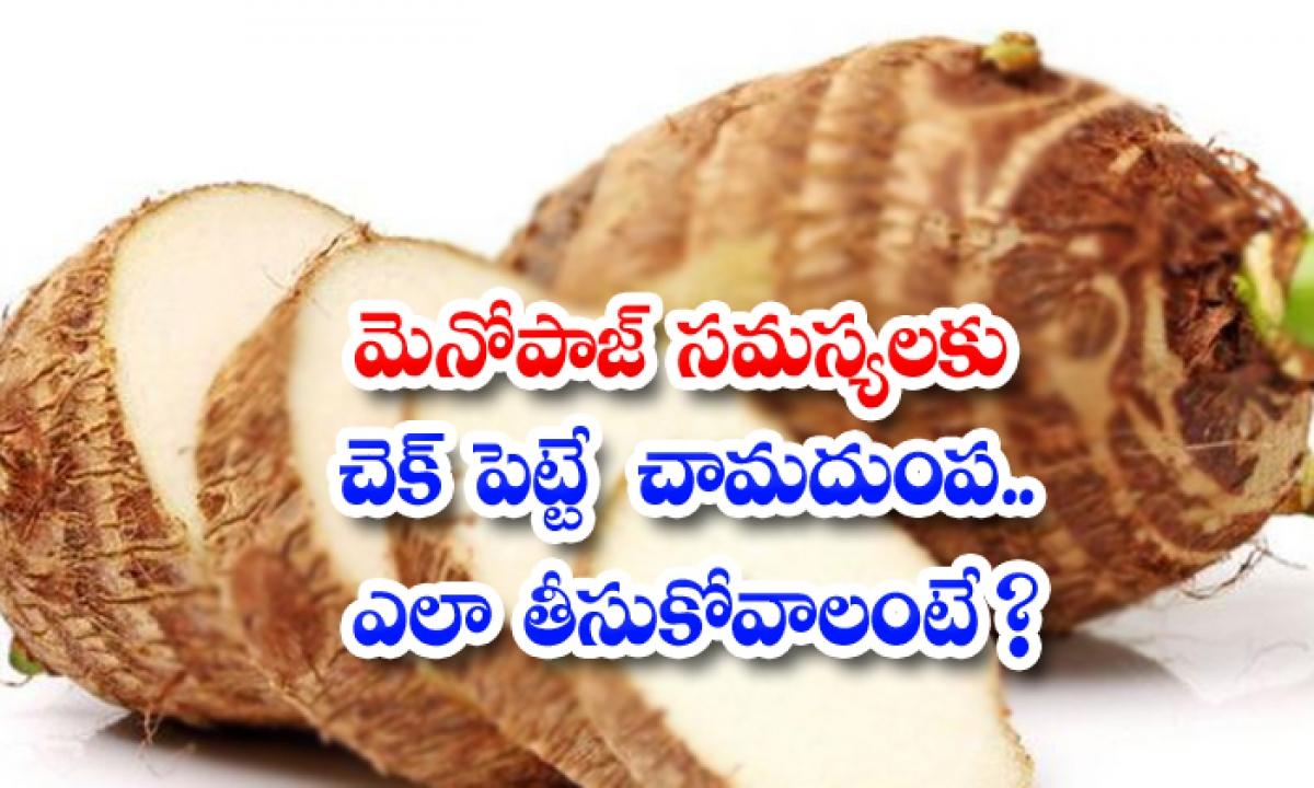 Taro Root Helps To Control Menopause Problems-మెనోపాజ్ సమస్యలకు చెక్ పెట్టే చామదుంప..ఎలా తీసుకోవాలంటే-Latest News - Telugu-Telugu Tollywood Photo Image-TeluguStop.com