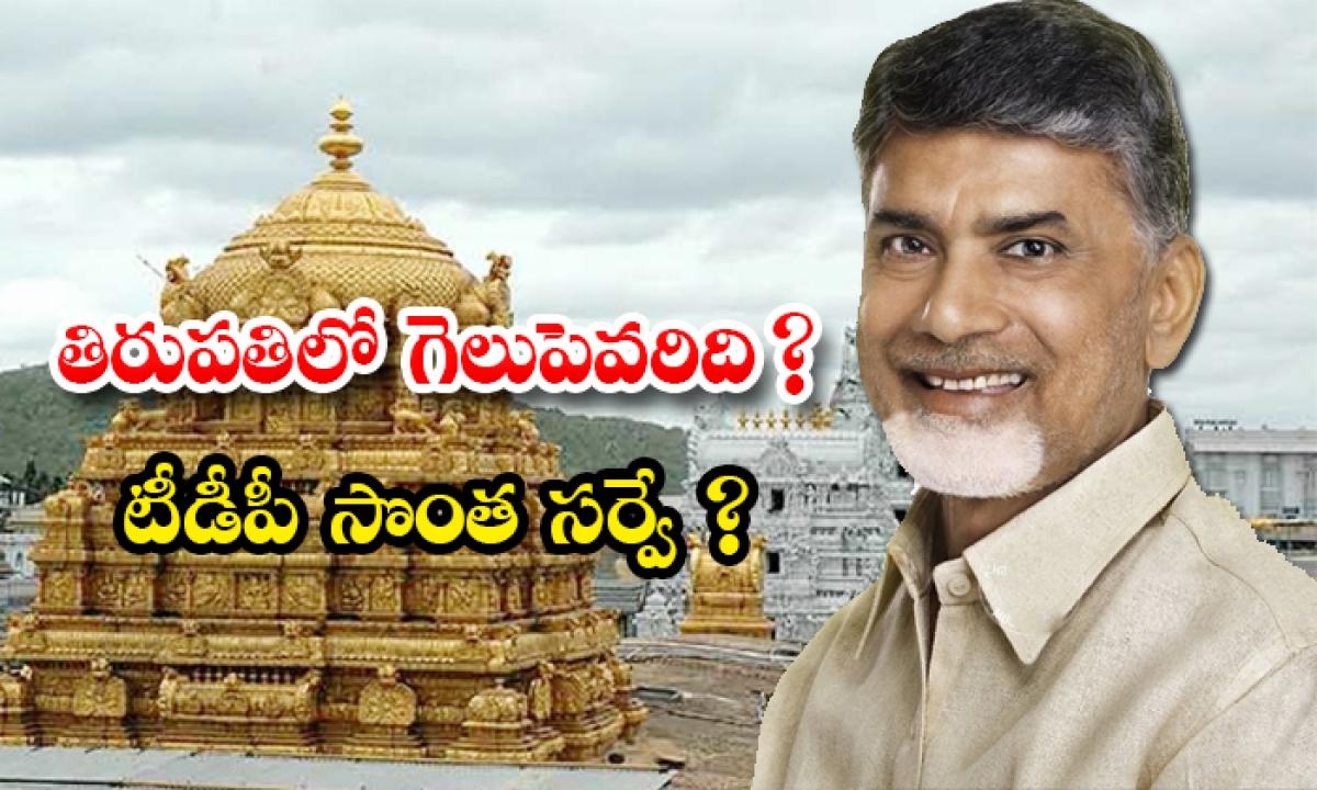 Tdp Survey On Tirupati By Elections Results-TeluguStop.com