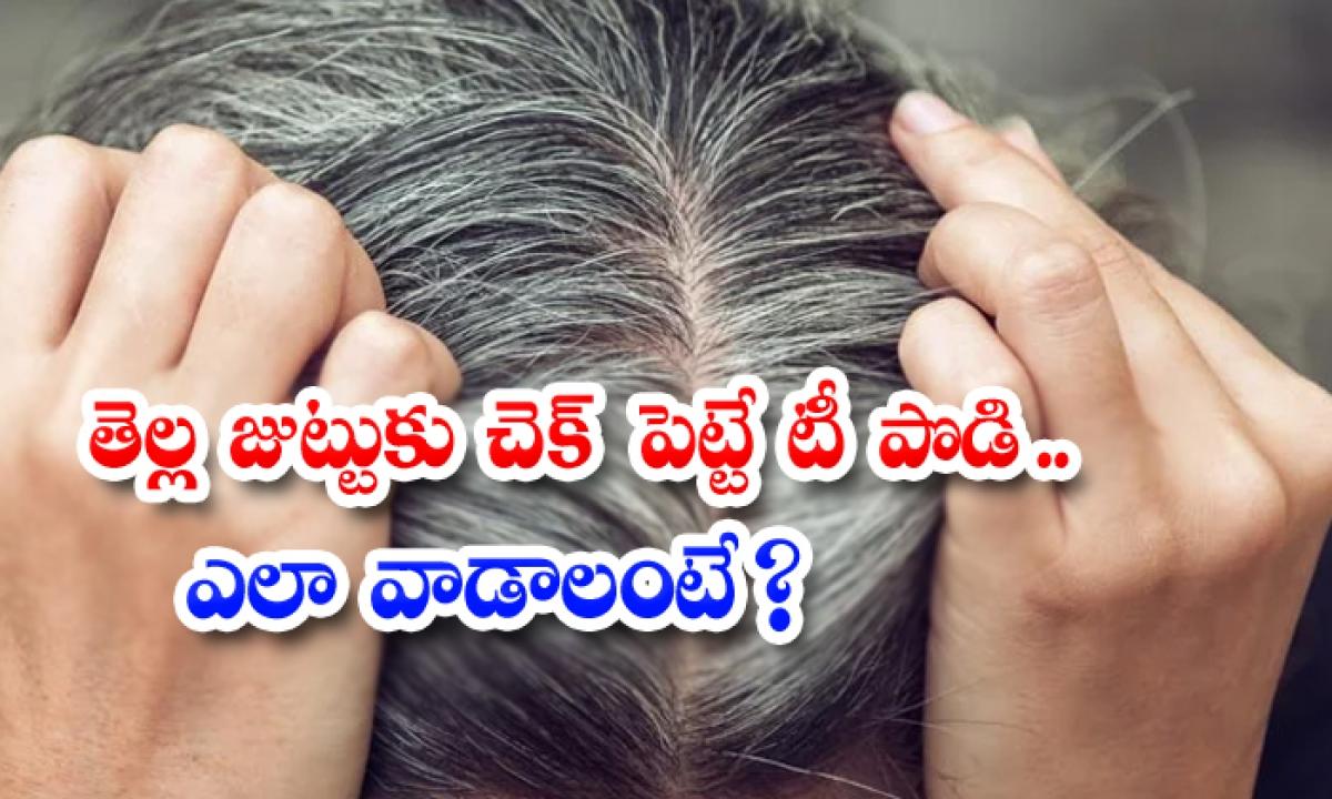 Tea Powder Helps To Reduce White Hair-తెల్ల జుట్టుకు చెక్ పెట్టే టీ పొడి..ఎలా వాడాలంటే-Latest News - Telugu-Telugu Tollywood Photo Image-TeluguStop.com
