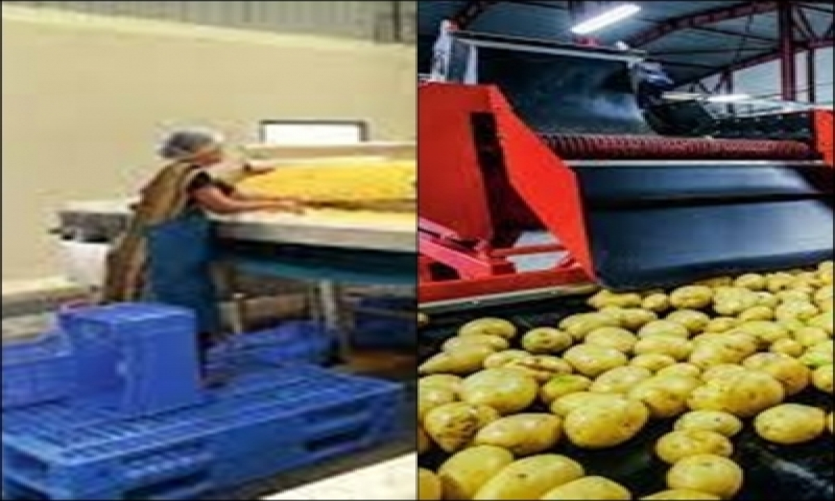 Telangana Aims To Attract Rs 25k Cr Investment In Food Processing-TeluguStop.com