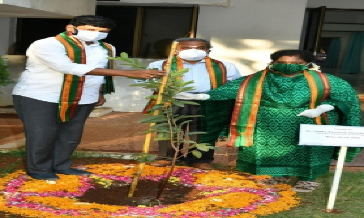 Telangana Mp's Green Challenge Making A Difference-TeluguStop.com