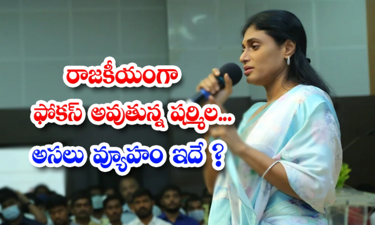 Politically Focused Sharmila Is This The Real Strategy-TeluguStop.com