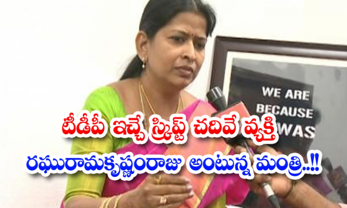 The Person Who Reads The Script Given By Tdp Is Raghuram Krishna Raju The Minister Says-TeluguStop.com