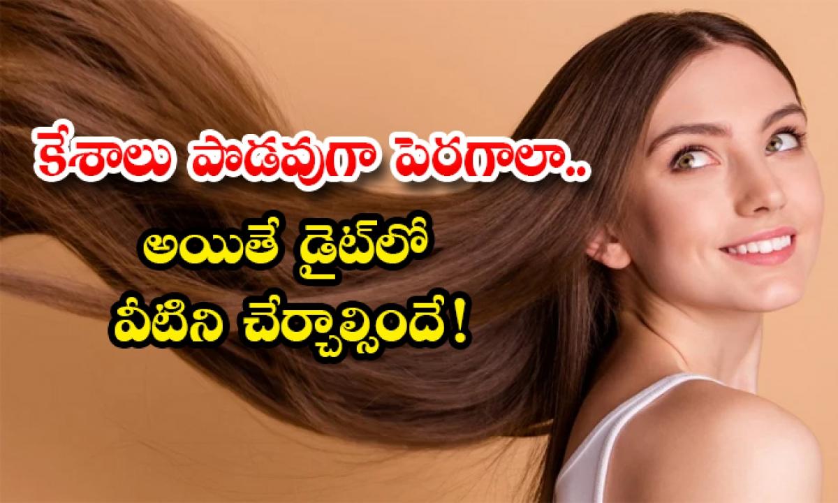 These Foods Are Help To Increase Hair Growth-కేశాలు పొడవుగా పెరగాలా..అయితే డైట్లో వీటిని చేర్చాల్సిందే-Latest News - Telugu-Telugu Tollywood Photo Image-TeluguStop.com