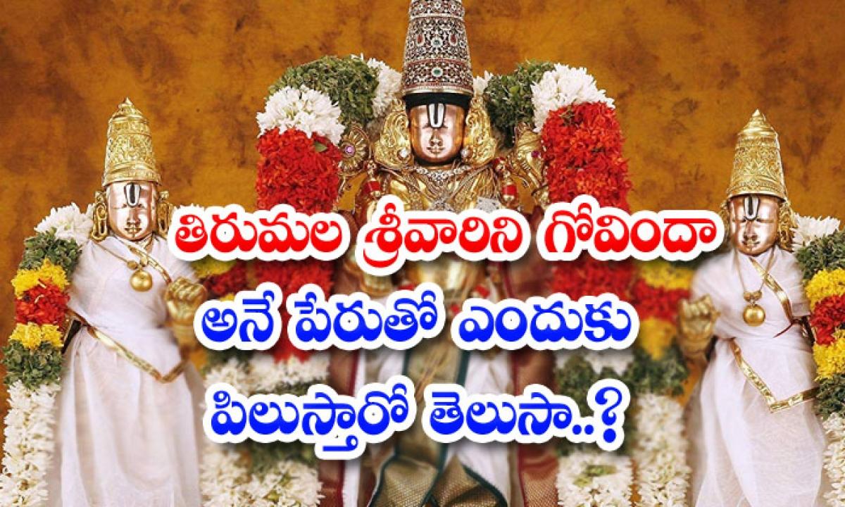 Do You Know Why Lord Venkateshwara Called Govinda-తిరుమల శ్రీవారిని గోవిందా అనే పేరుతో ఎందుకు పిలుస్తారో తెలుసా..-General-Telugu-Telugu Tollywood Photo Image-TeluguStop.com