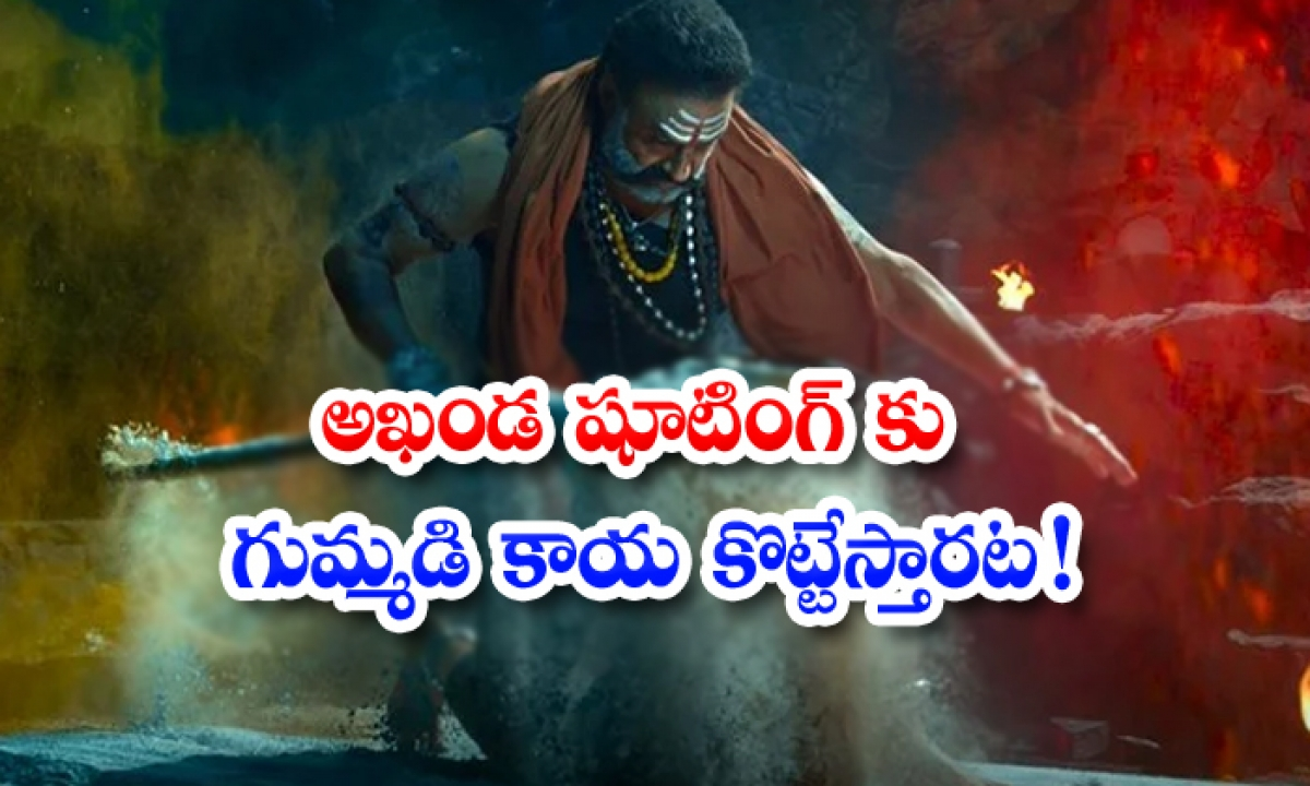 Balakrishna Akhanda Movie Shooting On Going-అఖండ షూటింగ్ కు గుమ్మడి కాయ కొట్టేస్తారట-Latest News - Telugu-Telugu Tollywood Photo Image-TeluguStop.com