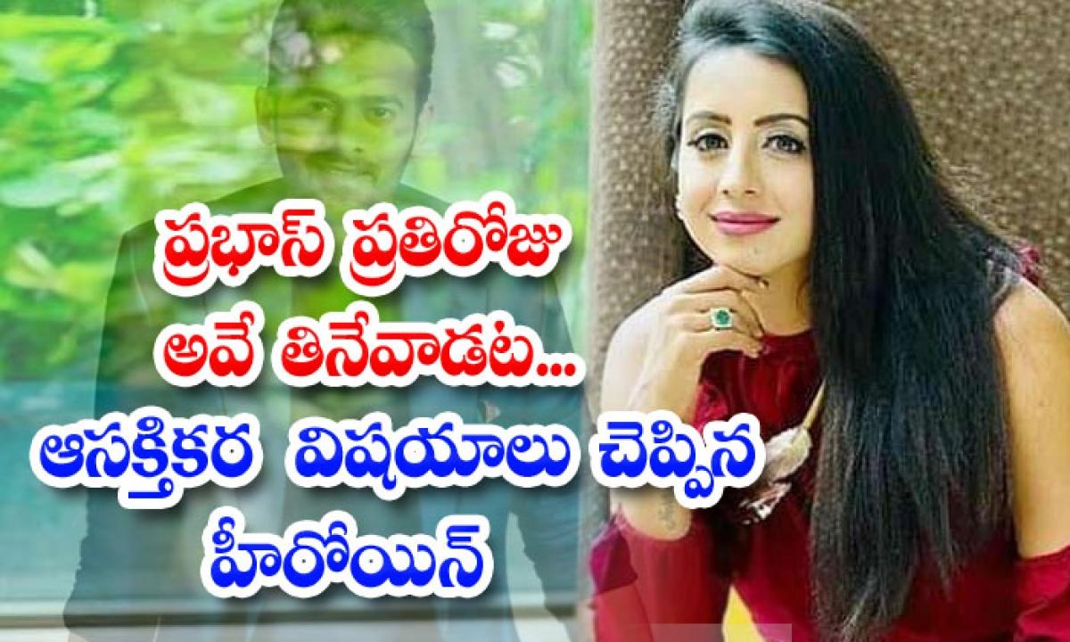 Bujjigadu Actress Sanjana Galrani Speaks About Prabhas-ప్రభాస్ ప్రతిరోజూ అవే తినేవాడట.. ఆసక్తికర విషయాలు చెప్పిన హీరోయిన్-Latest News - Telugu-Telugu Tollywood Photo Image-TeluguStop.com