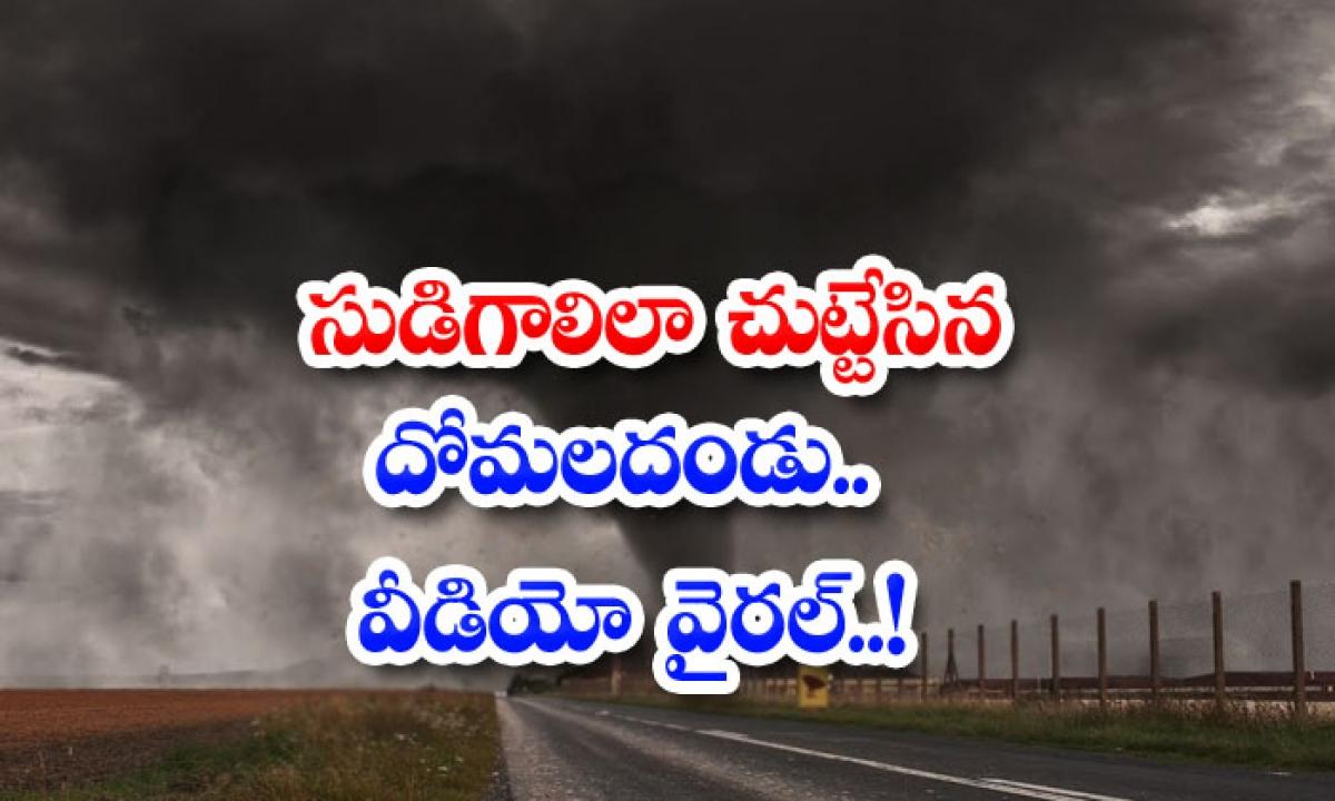 Driver Captures Tornado Of Swarming Mosquitoes In East Russia-సుడిగాలిలా చుట్టేసిన దోమలదండు.. వీడియో వైరల్..-General-Telugu-Telugu Tollywood Photo Image-TeluguStop.com