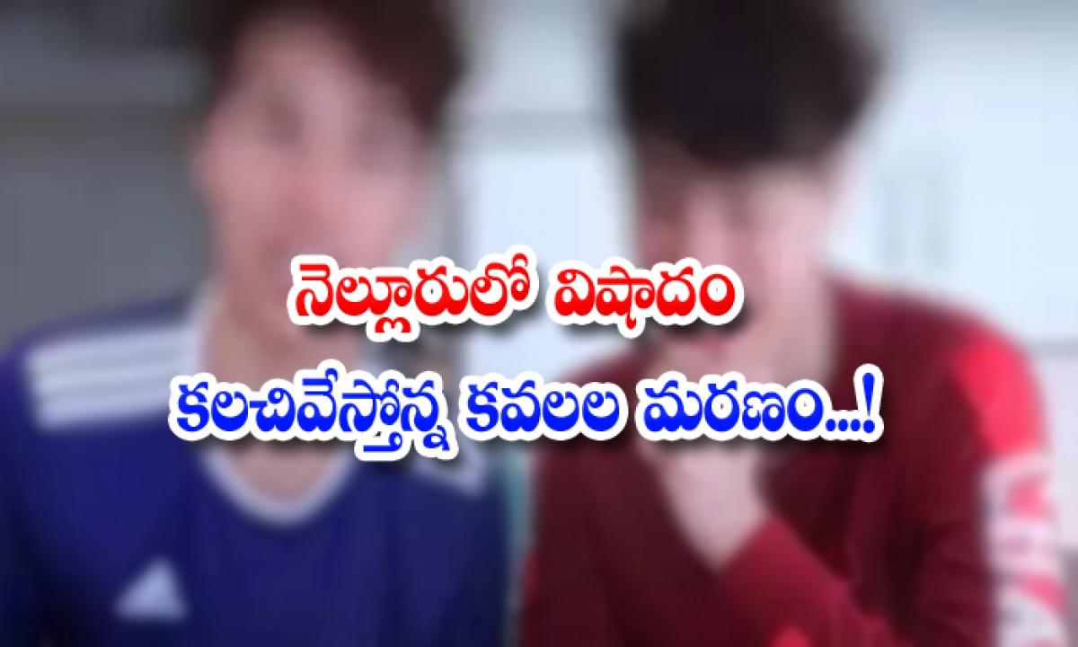 Tragedy Twins Died In Nellore District-నెల్లూరులో విషాదం.. కలచివేస్తోన్న కవలల మరణం..-General-Telugu-Telugu Tollywood Photo Image-TeluguStop.com