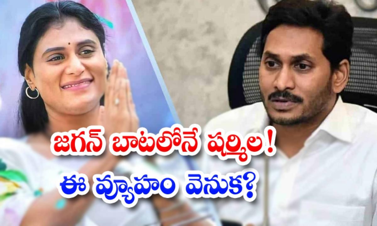 Ys Sharmila Follow On Ys Jagan Political Route-TeluguStop.com