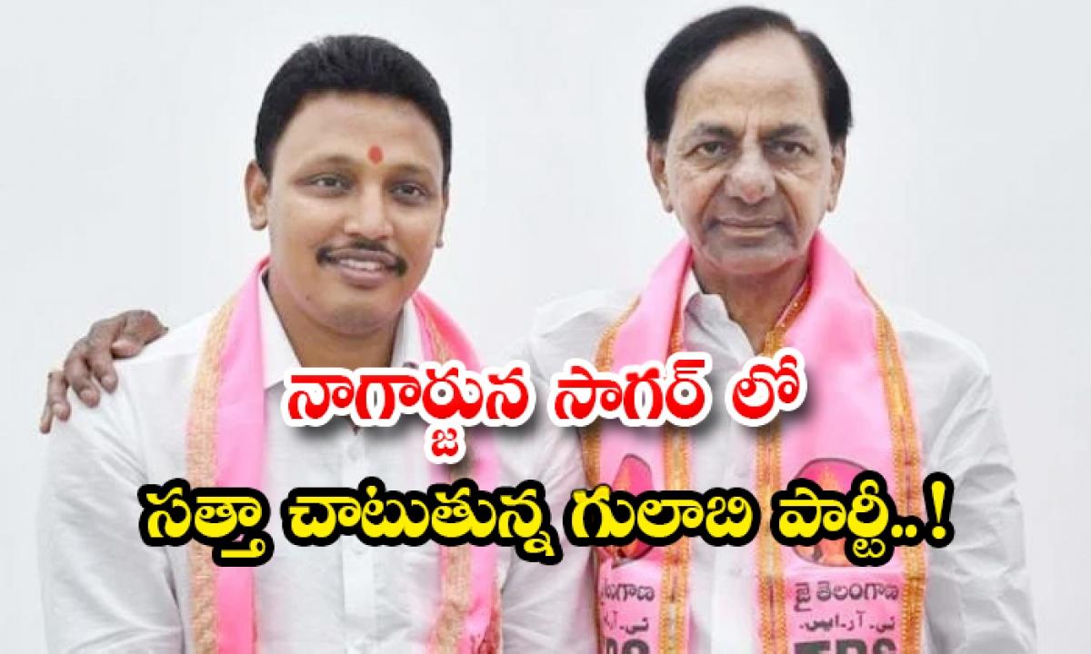 Trs Candiate Nomula Bhagath Leads In Nagarjuna Sagar By Polls-నాగార్జున సాగర్లో సత్తా చాటుతున్న గులాబి పార్టీ.. -Breaking/Featured News Slide-Telugu Tollywood Photo Image-TeluguStop.com