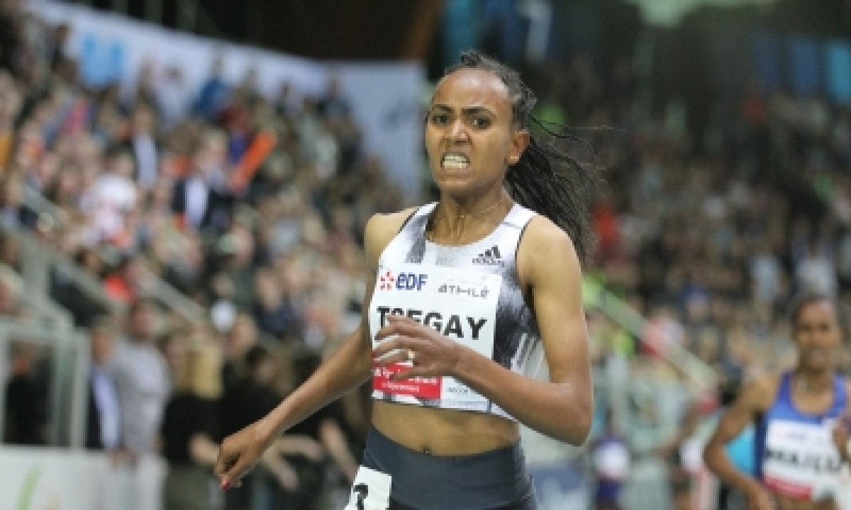 Tsegay, Chepkoech, Kandie On Cloud Nine As 3 World Records Ratified-TeluguStop.com