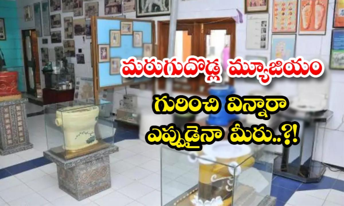 Unknown Facts About Toilets Museum In Delhi-మరుగుదొడ్ల మ్యూజియం గురించి విన్నారా ఎప్పుడైనా మీరు..-General-Telugu-Telugu Tollywood Photo Image-TeluguStop.com