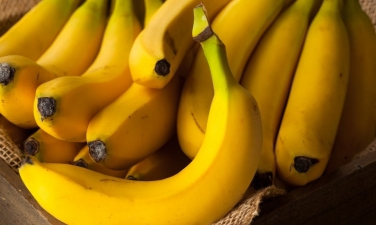 Up Bananas Being Exported To Iran – Mumbai News | National-TeluguStop.com