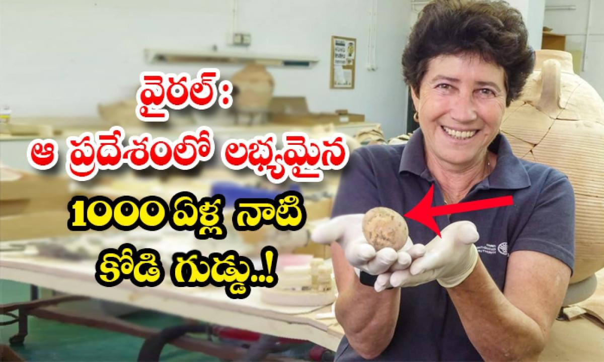 Viral 1000 Years Old Hen Egg Found In Israel-వైరల్: ఆ ప్రదేశంలో లభ్యమైన 1000 ఏళ్ల నాటి కోడి గుడ్డు..-General-Telugu-Telugu Tollywood Photo Image-TeluguStop.com