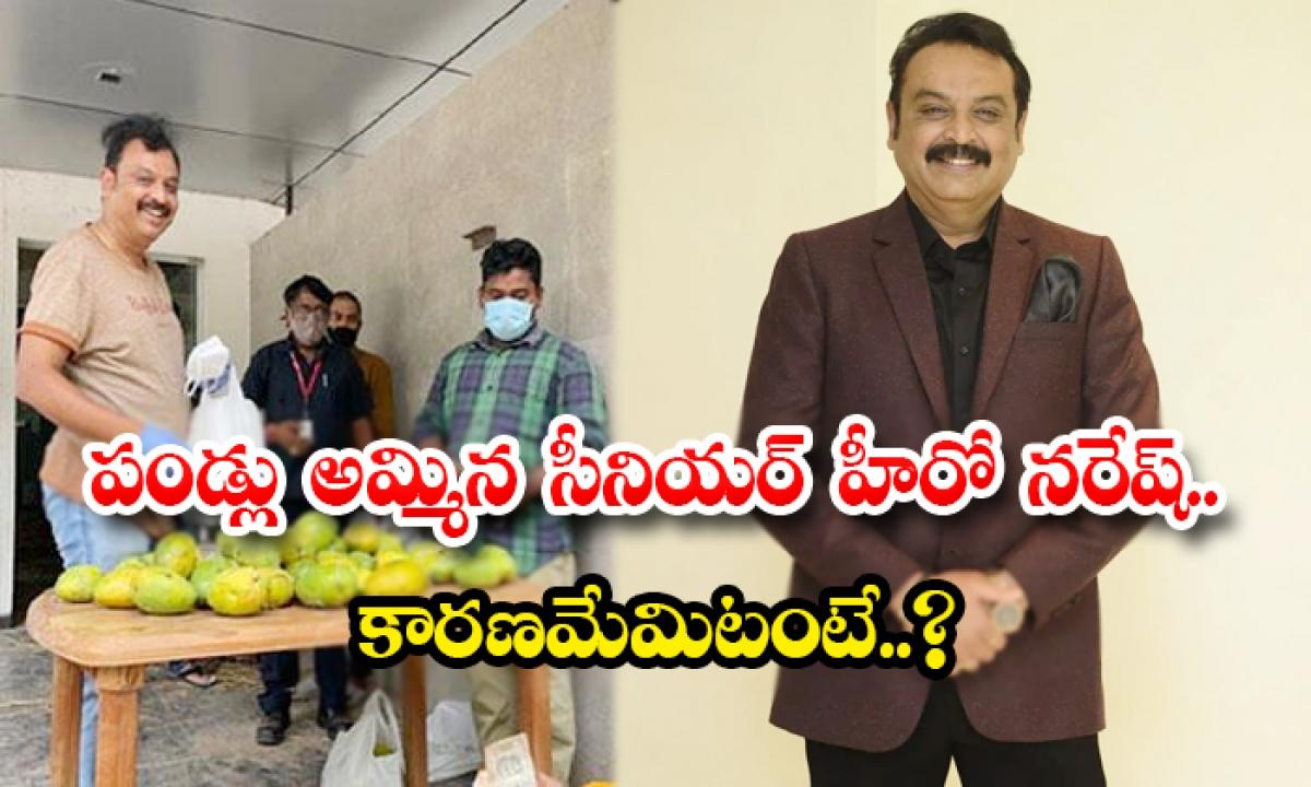 Viral Actor Naresh Sell Mangoes And Kala Jamuns His Studio-పండ్లు అమ్మిన సీనియర్ హీరో నరేష్.. కారణమేమిటంటే..-Latest News - Telugu-Telugu Tollywood Photo Image-TeluguStop.com