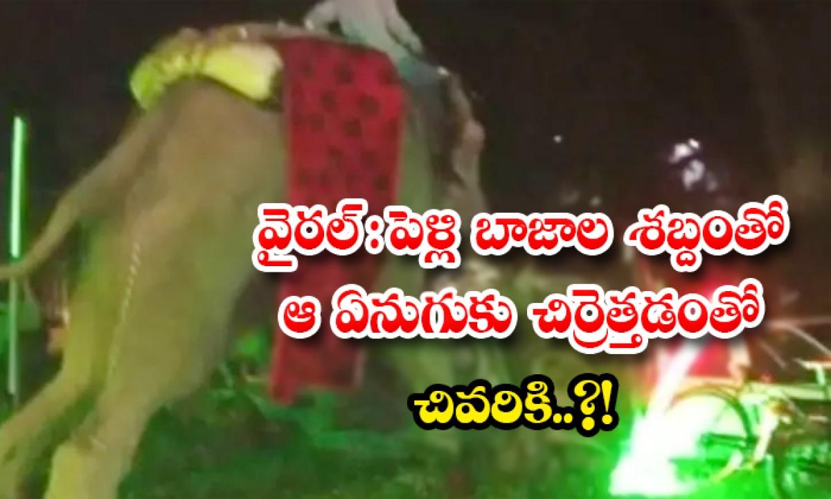 Viral An Elephant Got Crazy And Destroyed Wedding Set And Cars In Uttar Pradesh-వైరల్: పెళ్లి బాజాల శబ్దంతో ఆ ఏనుగుకు చిర్రెత్తడంతో చివరికి..-General-Telugu-Telugu Tollywood Photo Image-TeluguStop.com