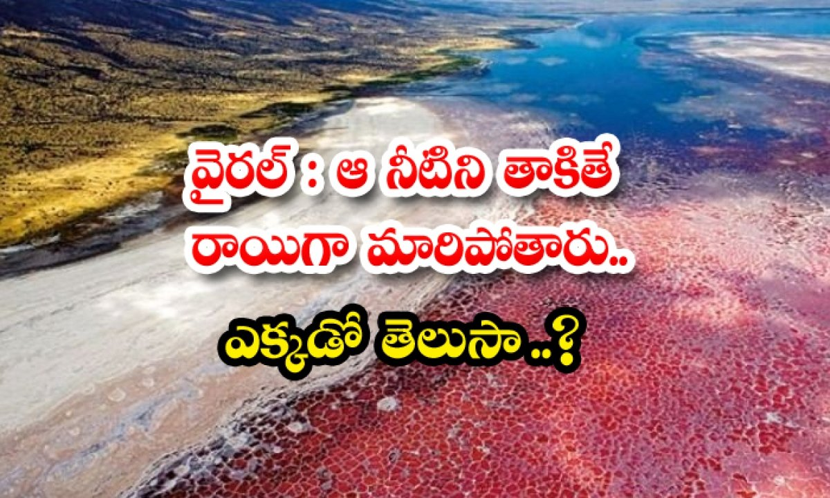 Viral If You Touch That Water It Will Turn To Stone Do You Know Somewhere-TeluguStop.com