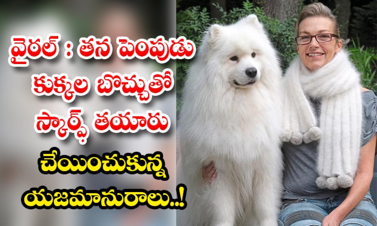 The Viral Pet Owner Who Made Scarf Out Of Her Pet Dogs Fur-వైరల్: తన పెంపుడు కుక్కల బొచ్చుతో స్కార్ఫ్ తయారు చేయించుకున్న యజమానురాలు..-General-Telugu-Telugu Tollywood Photo Image-TeluguStop.com