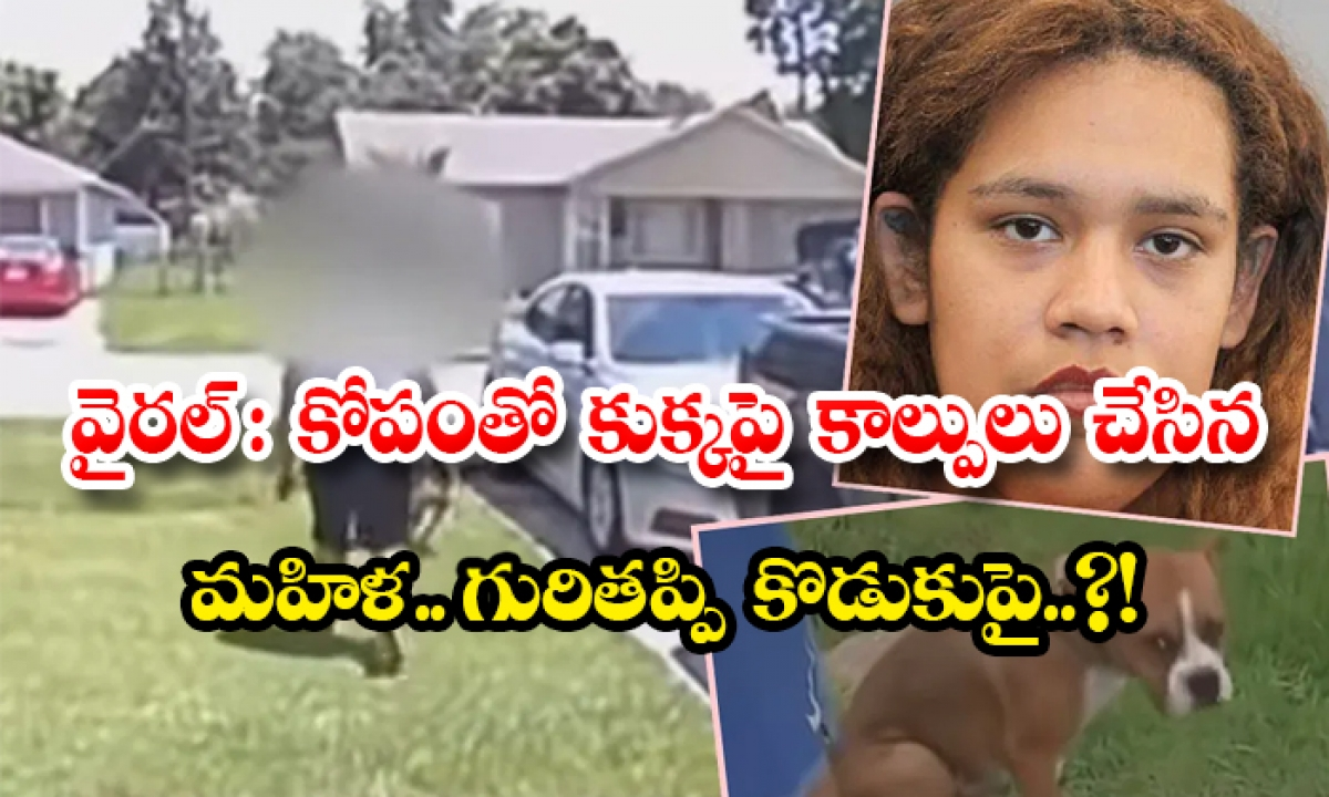 Viral Woman Shoots Dog Bullet Misfires And Hits Son-వైరల్: కోపంతో కుక్కపై కాల్పులు చేసిన మహిళ.. గురితప్పి కొడుకుపై..-General-Telugu-Telugu Tollywood Photo Image-TeluguStop.com