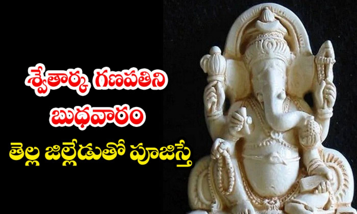 What If Swetarka Ganapati Is Worshiped With A White District-TeluguStop.com