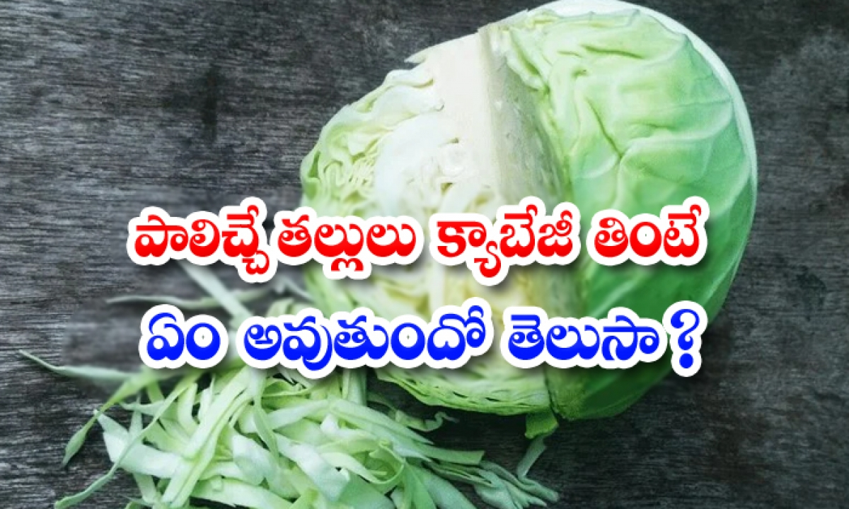 What Happens If Breastfeeding Moms Eat Cabbage-TeluguStop.com