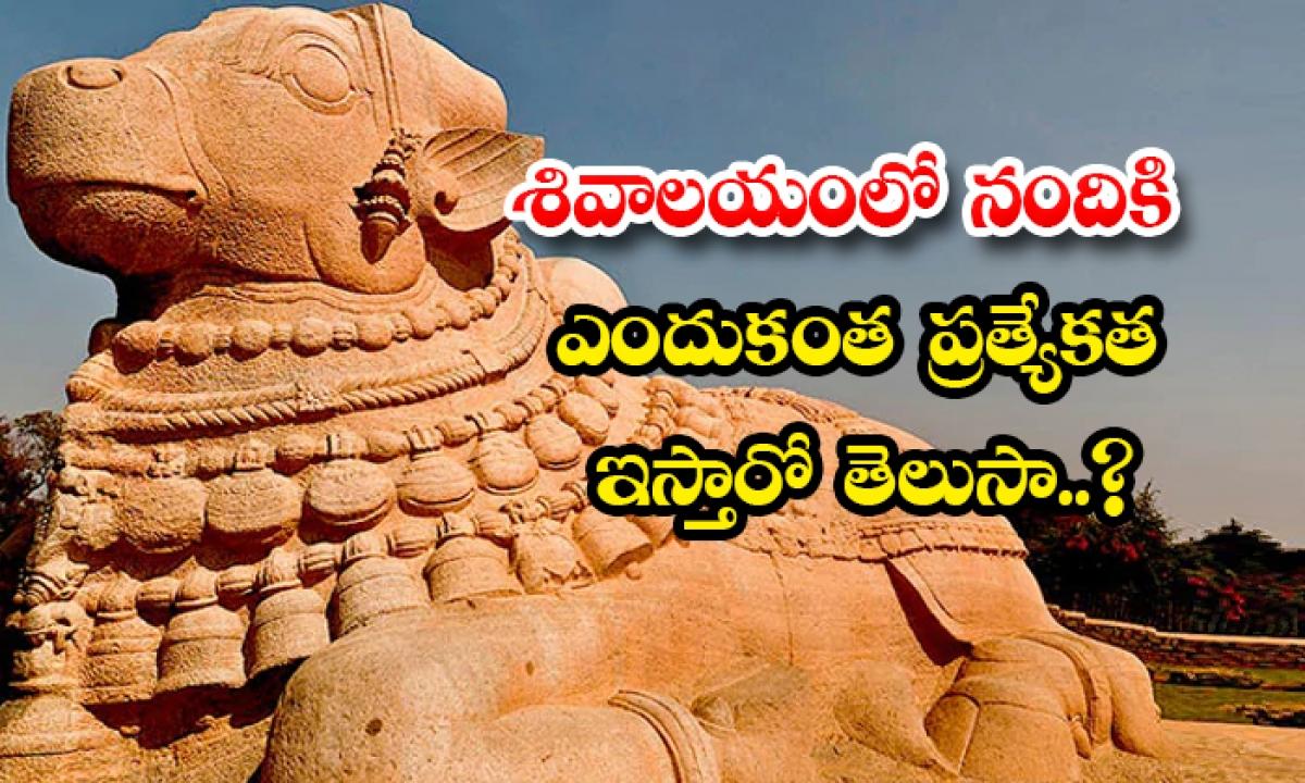Do You Know Why Nandi Is Special In Shiva Temple-శివాలయంలో నందికి ఎందుకంత ప్రత్యేకత ఇస్తారో తెలుసా..-Latest News - Telugu-Telugu Tollywood Photo Image-TeluguStop.com