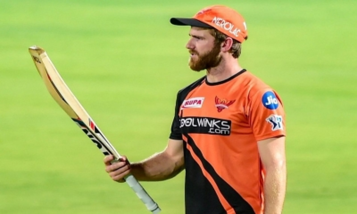 Williamson's Level Head Needed By Srh Amid Hard-hitters-TeluguStop.com