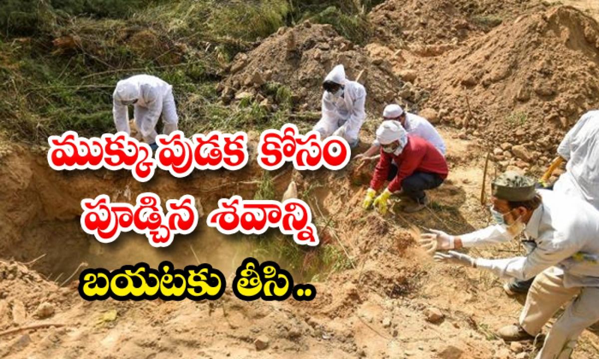 Woman Dead Body Dug Out Grave Gold Medak-TeluguStop.com