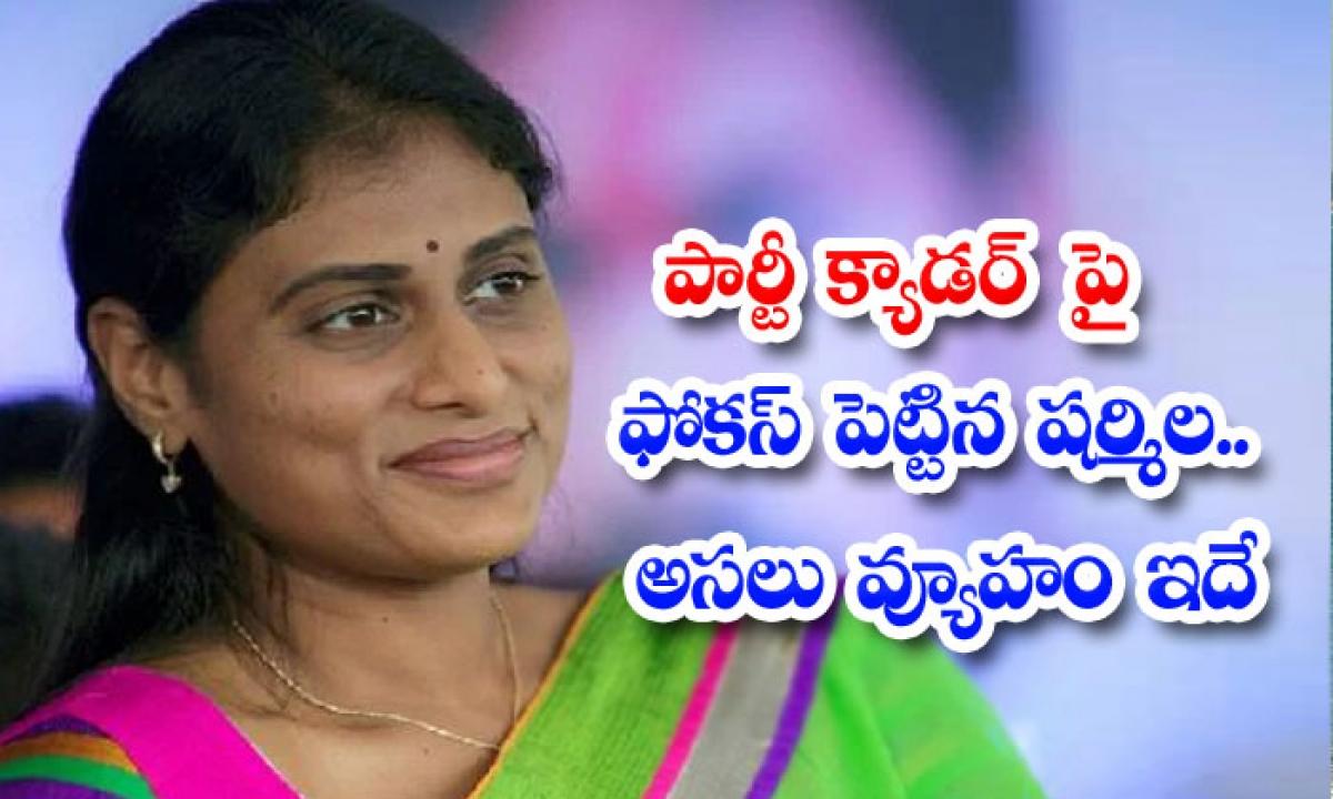 Sharmila Focused On The Party Cadre This Is The Real Strategy-పార్టీ క్యాడర్ పై ఫోకస్ పెట్టిన షర్మిల…అసలు వ్యూహం ఇదే-Latest News - Telugu-Telugu Tollywood Photo Image-TeluguStop.com