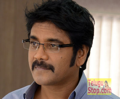 Nag Teams Up With Lady Director?-TeluguStop.com