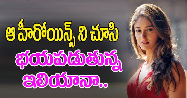Ileana Tensed With Akshay Kumar Sentiment-TeluguStop.com