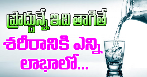 Drinking Salt Water Every Morning Will Benefit You In Number Of Ways-TeluguStop.com