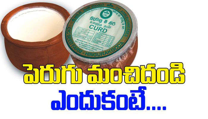 Healthy Benefits Of Curd-TeluguStop.com