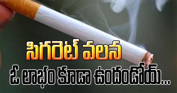 Cigarette Can Reduce Calorie Intake – Study In Greece-Cigarette Can Reduce Calorie Intake – Study In Greece-Telugu Health-Telugu Tollywood Photo Image-TeluguStop.com