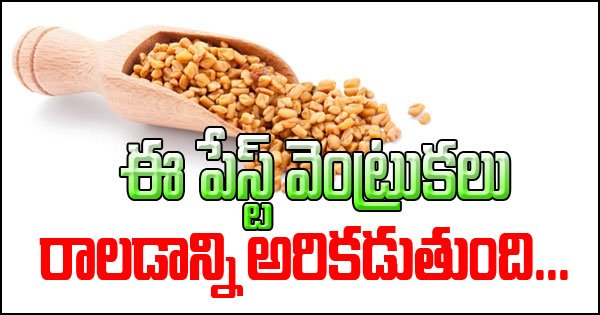 Fenugreek Paste For Hair Fall Control-Fenugreek Paste For Hair Fall Control-Telugu Health-Telugu Tollywood Photo Image-TeluguStop.com