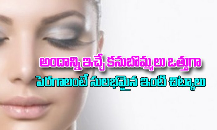 How To Grow Thick Eyebrows Naturally-How To Grow Thick Eyebrows Naturally-Telugu Stop Exclusive Top Stories-Telugu Tollywood Photo Image-TeluguStop.com