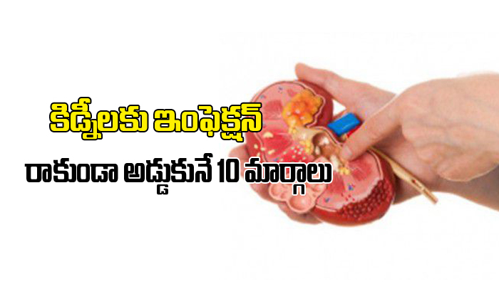 10 Ways To Prevent Kidney Infections-TeluguStop.com