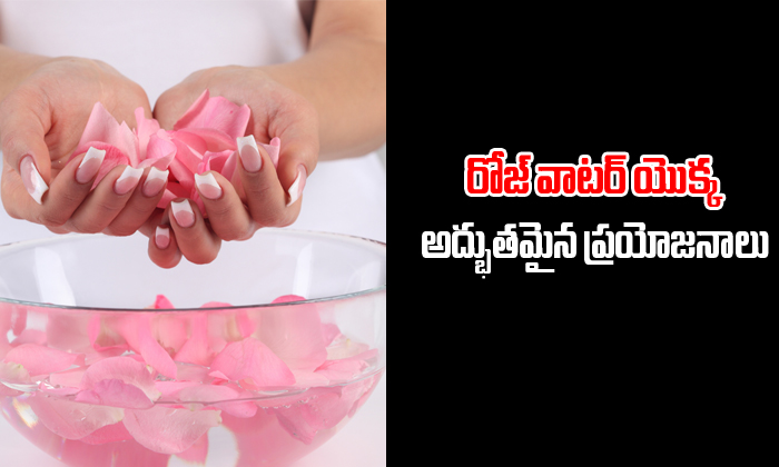 Benefits Of Rose Water-TeluguStop.com