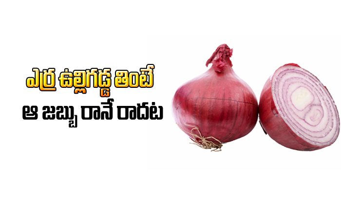 Eating Red Onions Can Avoid And Cure Cancer – Study-Eating Red Onions Can Avoid And Cure Cancer – Study-Telugu Health-Telugu Tollywood Photo Image-TeluguStop.com