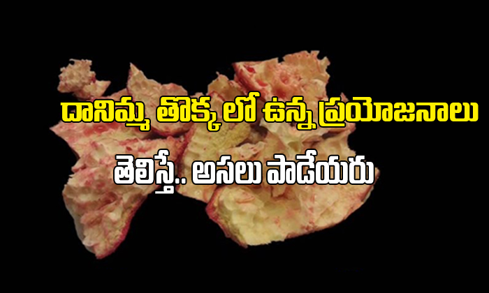 Health Benefits Of Pomegranate Peel-TeluguStop.com