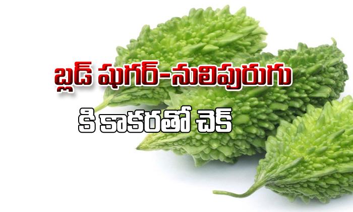 Bitter Control Blood Sugar Levels-TeluguStop.com