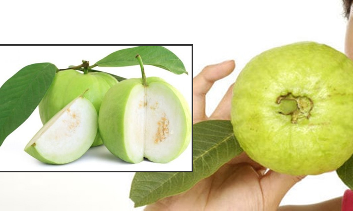 Amazing Health Benefits Of Guava Fruit In Telugu-TeluguStop.com