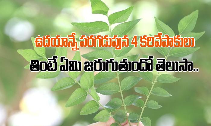 Health Benefits Of Curry Leaves In Telugu-TeluguStop.com