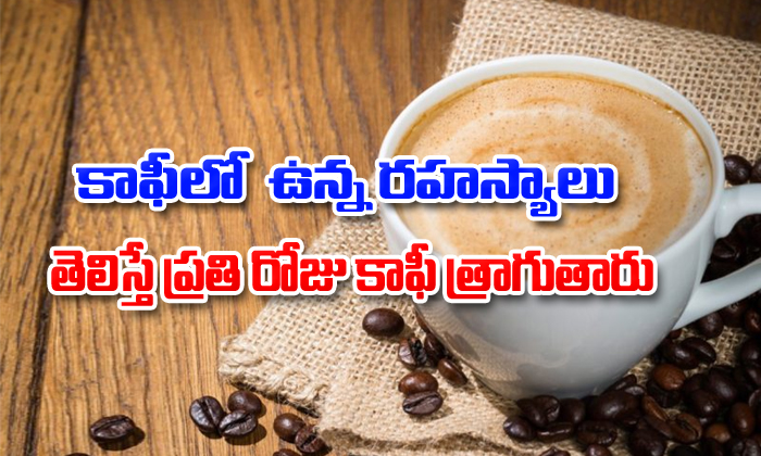 Health Benefits Of Drinking Coffee Everyday-TeluguStop.com