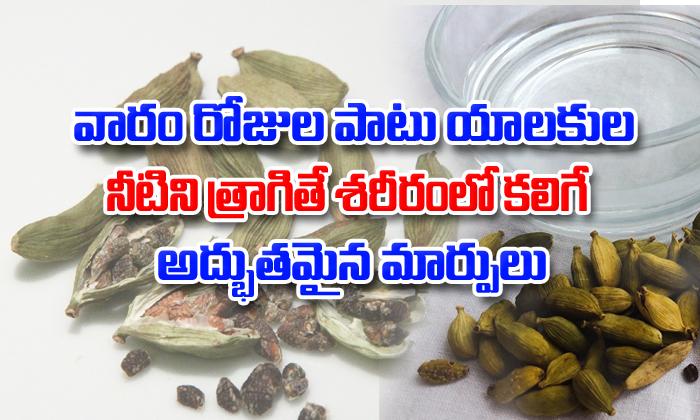 Health Benefits Of Cardamom Water-TeluguStop.com
