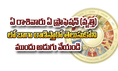 Jobs Profiles According To Zodiac Signs For Individual Persons-TeluguStop.com
