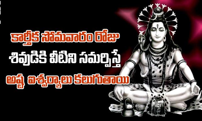 Offering Things To Lord Shiva In Karthika Masam-Offering Things To Lord Shiva In Karthika Masam-Devotional-Telugu Tollywood Photo Image-TeluguStop.com