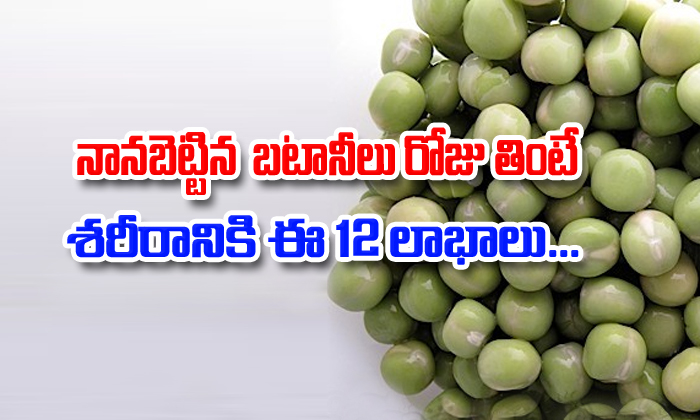 12 Healthy Benefits Of Soaked Green Peas-Telugu Health Tips-Telugu Tollywood Photo Image-TeluguStop.com